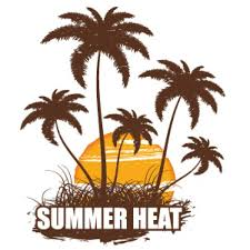 summer coconut tree silhouette seasons weather