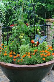 Vegetables For Container Gardening by
