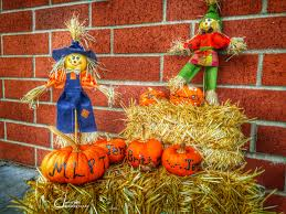 happy thanksgiving to all of you admin turning pointe physical therapy inc
