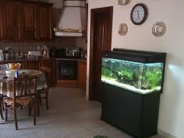 fish tank living room u2013 living room design inspirations