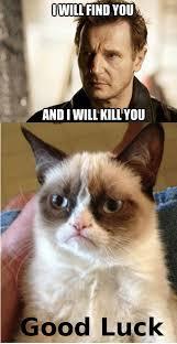 Liam Neeson Meme - taken masculinity memes and liam neeson linnet moss