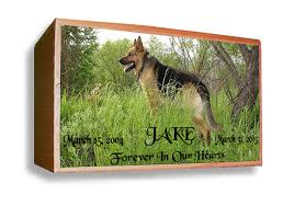 dog cremation dogs cats pet cremation urns for pet ashes burial urns memorial