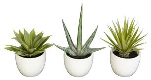 Fake Plants Faux Succulent Plants Set Of 3 Contemporary Artificial Plants