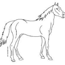horse coloring pages 51 animals coloring books