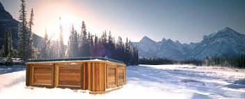 arctic spas outdoor tubs pools and swim spas for any climate