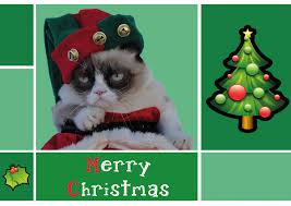 grumpy cat cards happy holidays