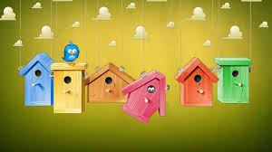 wallpaper cute house cute colorful birds houses hd wallpaper