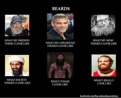 Funny Beard Memes - build a beard build a beard meme my beard