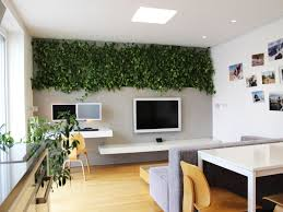 Indoor Plant Design by Home Office Indoor Flowering Office Plant Modern New 2017 Design