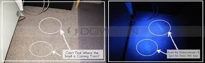 bed bug uv light bed bugs lice nits finding 14 led 395nm uv black light ultraviolet