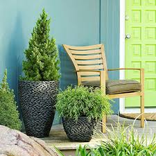 potted trees for a beautiful porch