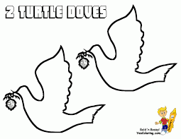 turtle dove coloring page u20ac coloring pics coloring home