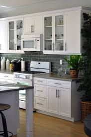 Kitchen Cabinet Glass Doors Elegant Kitchen Design Calm Wall Color Wooden Furnitures Kitchen
