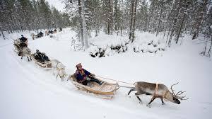 reindeer u0026 sami culture tours u0026 travel packages in lapland