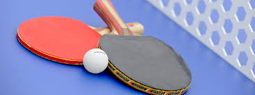 Table Tennis Table Tennis Alive Leisure