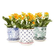 unique pots with drainage holes planters with drainage chive