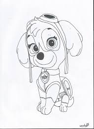 skye paw patrol coloring pages cartoons coloring