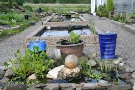 about us bergen water gardens lotus paradisebergen water