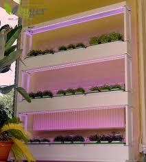 vegger groenten vegger vertical indoor gardening solutions