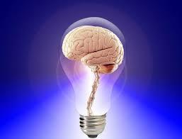 si e des motions dans le cerveau de la musique au cerveau l influx
