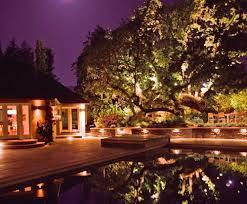 Landscape Lighting Ideas Trees Tree Oak Lights Pool Lighting Aesthetic Gardens Mountain View