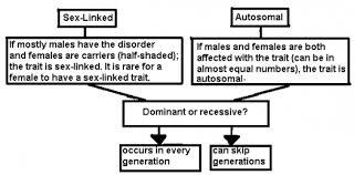 pedigree analysis practice proprofs quiz