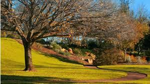 Mt Lofty Botanic Gardens Mount Lofty Botanic Garden Aroundyou