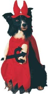 Dog Halloween Costumes Girls 25 Large Dog Halloween Costumes Ideas