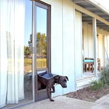pet doors for sliding glass door pet doors sliding wall doors mounted 50 gallon trash can in