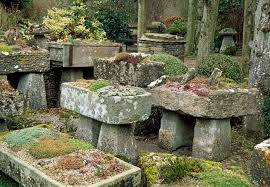 How To Make Rock Garden How To Create A Rock Garden Mnn Nature Network