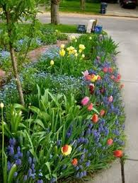 Pretty Types Of Flowers - designing with spring bulbs spring bulbs spring flowering bulbs