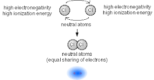 ionic and covalent bonds overview