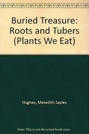 buried treasure roots u0026 tubers plants we eat meredith sayles