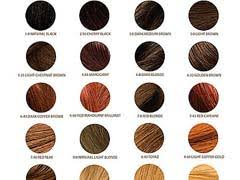 Types Of Hair Colour by 1000 Ideas About Hair Color Names On Shades Of Hair