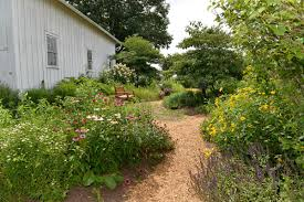 native plant nursery michigan 10 native plant gardens and nurseries to check out in the