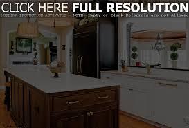 kitchen elegant small kitchen design ideas kitchen cabinet