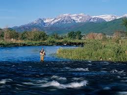 Utah rivers images 5 best utah rivers for summer fly fishing yobi adventures jpg