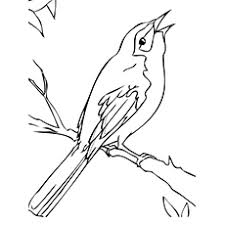 coloring page for toddlers top 10 mockingbird coloring pages for toddlers