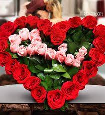 imagenes para enamorar con flores mejores 40 imágenes de flores para enamorar en pinterest para