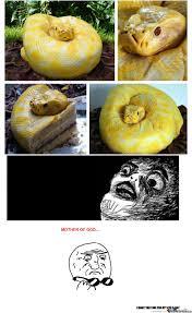 Man Vs Wild Meme - man vs wild cake by wh013 meme center