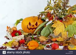 autumn halloween background autumn composition of vegetables of leaves and the pumpkin