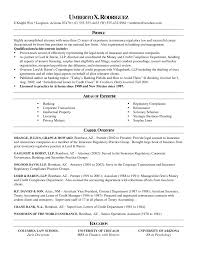 Apa Resume Template 100 Sample Lawyer Resume 14 Best Legal Resume Images On