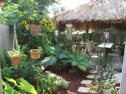 Tropical Backyard Ideas 95 Best Tropical Backyard Ideas Images On Pinterest Backyard