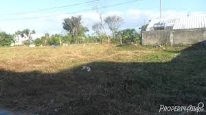 Sqm by 120 Sqm Residential Land Lot For Sale Philippines For U20b1 480 000