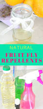 What Are The Small Flies In My Bathroom Best 25 Fruit Flies In House Ideas On Pinterest Fruit Fly Spray