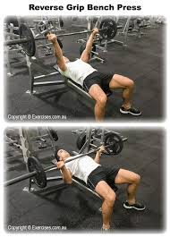 Sore Shoulder From Bench Press Best 25 Bench Press Weights Ideas On Pinterest Bench Press