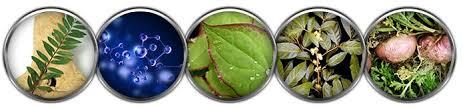 obat biomanix original pembesar alat vital murah