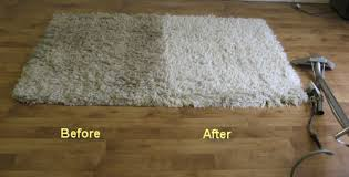 Area Rug Cleaning Service Area Rugs
