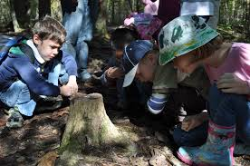 school field trips to shaver s creek environmental center central pa