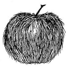 apply textures to apples art lesson
